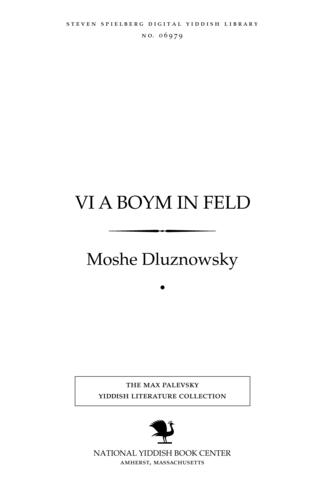 Thumbnail image for Ṿi a boym in feld roman