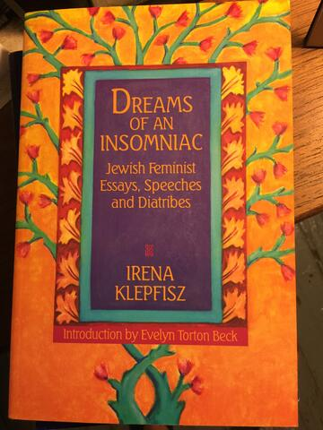 Dreams of an Insomniac/Jewish Feminist Essays, Speeches and Diatribes cover