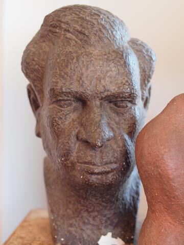 Meyer Krawetz bust 1