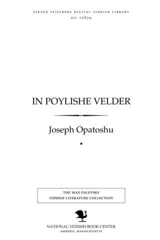 Thumbnail image for In Poylishe ṿelder roman