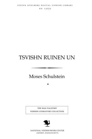 Thumbnail image for Tsṿishn ruinen un rushṭaṿanyes fun a rayze in Poyln