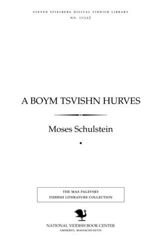 Thumbnail image for A boym tsṿishn ḥurṿes̀ lider un poemes