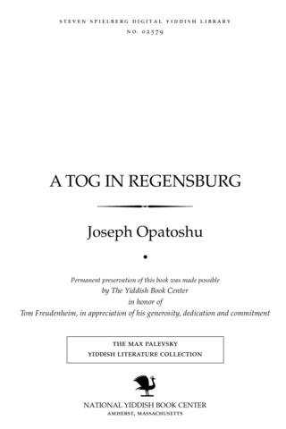 Thumbnail image for A ṭog in Regensburg