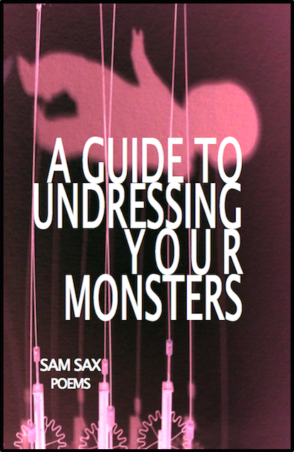 "Image of the cover of sam sax's ""A Guide to Undressing Your Monsters."""