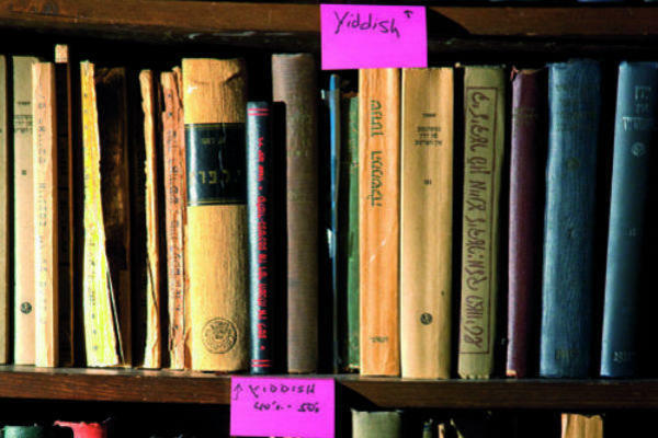 A photograph of Yiddish books on a bookshelf